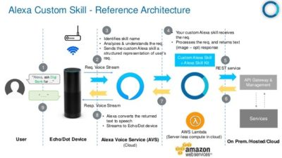 Alexa Custom Skill Reference Architecture Diagram